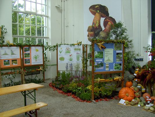 Foto: Ausstellung des Landkreises München zum Erntedankfest mit Früchten, Blumen und Info-Tafeln
