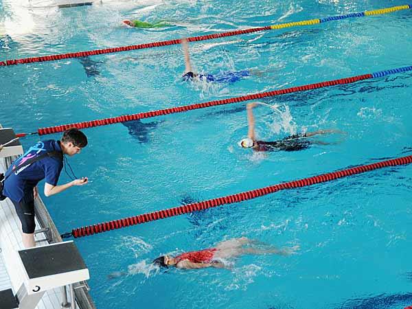 Foto: Jugend-Olympiade 2016: Schwimmen