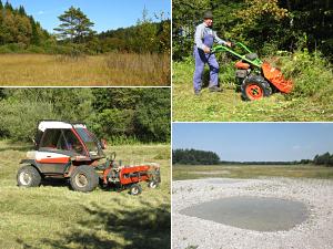 Foto: Biotopschutz und Biotoppflege Collage