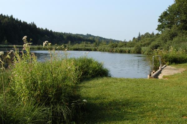 Foto: Deininger Weiher (Gleißental-Weiher)