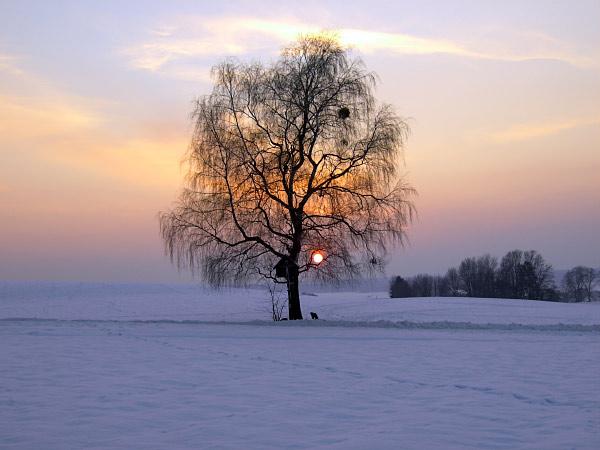 Foto: Landschaft Aying