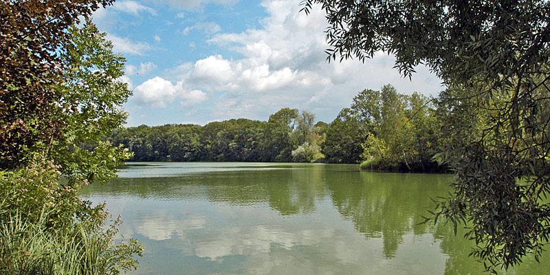 Foto: der Unterföhringer See